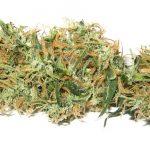 How is Marijuana Legalization Working?